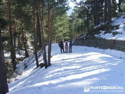 Camino Schmidt - Sierra de Guadarrama; Grupos pequeños; gente vip